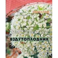 Вздутоплодник сибирский 40г